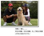 ガンバレ!老犬2009 ホタパパ写心展