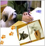 ペット肖像画教室