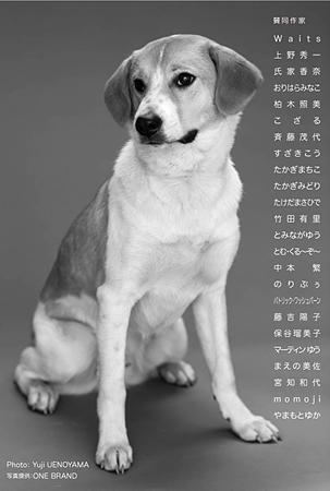 「大好きな犬たちへ」ギャラリーコピス