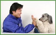 上野洋一郎先生のパピーパーティー